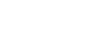 About Passion Logo